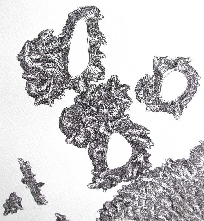 morgan_downie-contour_crop